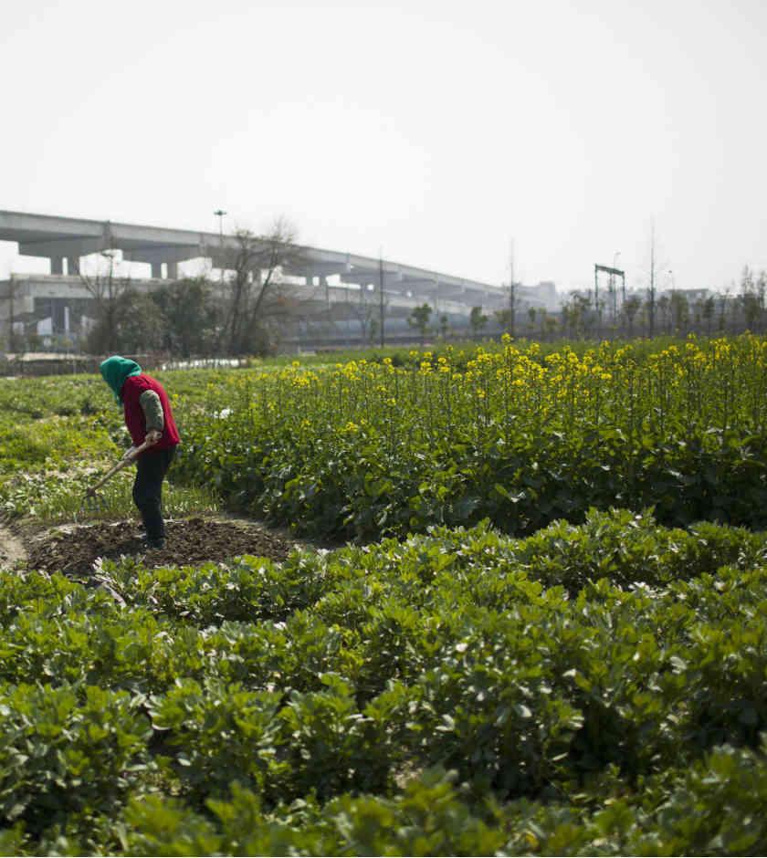 Agricultores de EU piden continuar con el TLCAN