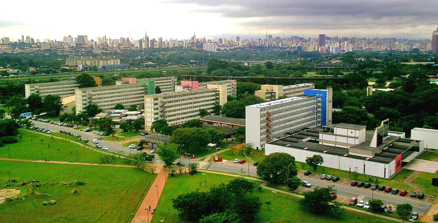 Sao Paulo se encuentra en riesgo de fiebre amarilla: OMS