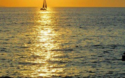 Puerto Vallarta niega que turistas estuvieran involucrados en secuestro