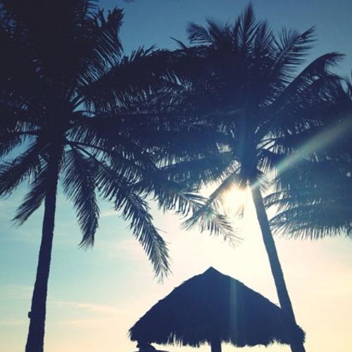 Senadores del PAN exigen cancelación de obra turística en Nayarit