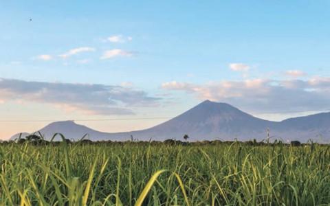 BID dará 615 mdd a Nicaragua entre 2017 y 2018