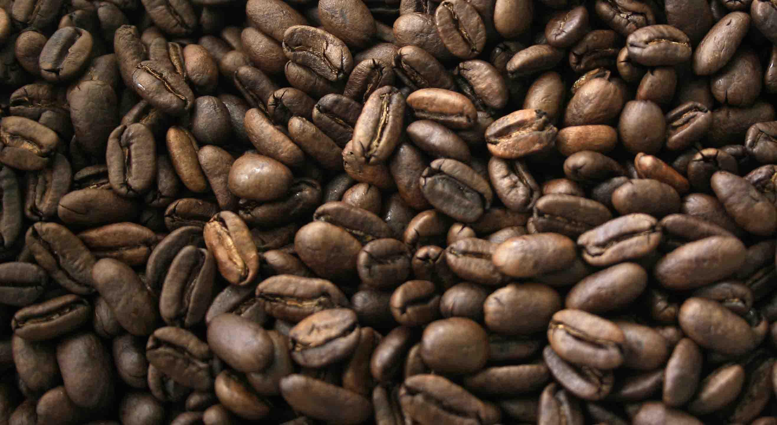 Aranceles de Trump pegarán a los mexicanos amantes del café
