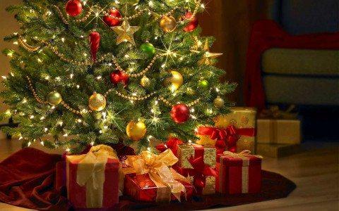 Una subasta transforma árboles navideños en sueños cumplidos