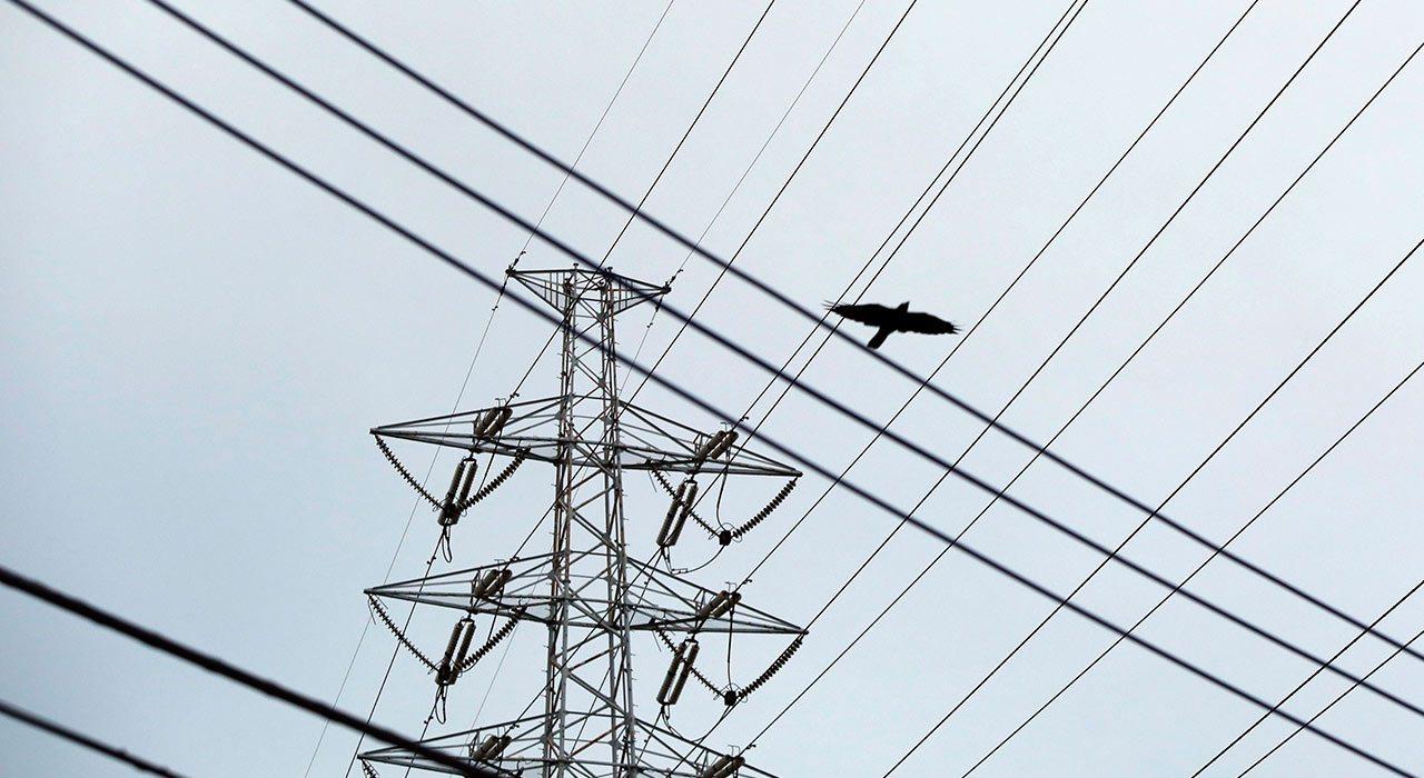 CFE restablece casi por completo electricidad en Los Cabos tras Lidia