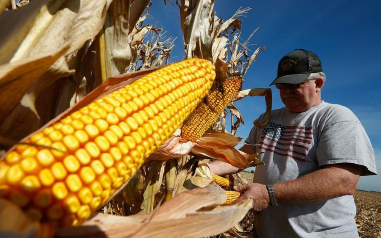 Monsanto abandona planes para comprar a Syngenta