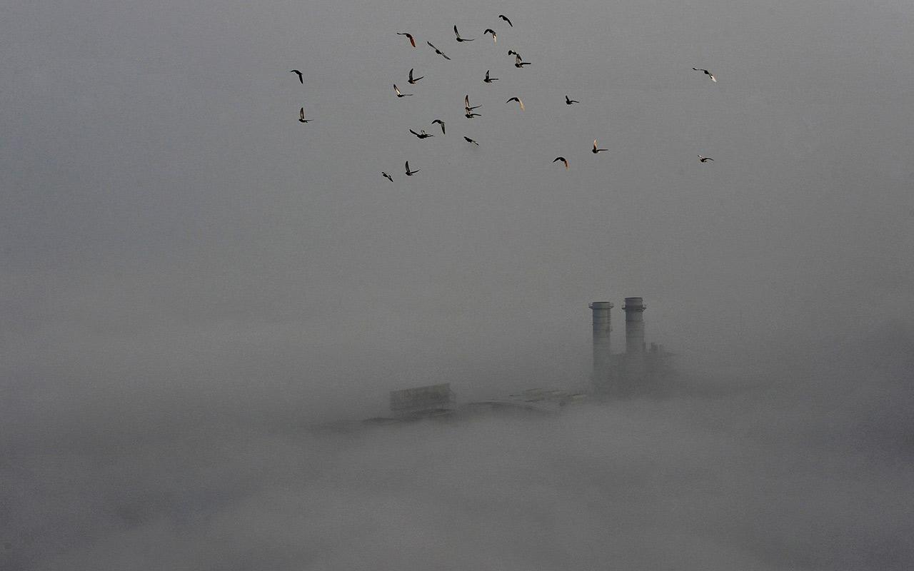 Bancos centrales crean red para responder ante cambio climático