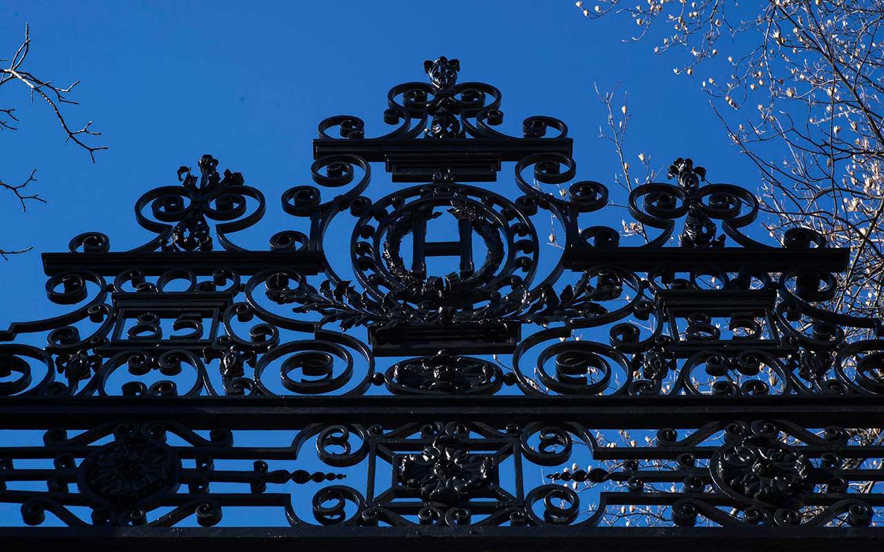 Harvard y MIT van contra suspensión de visa a estudiantes por clases online