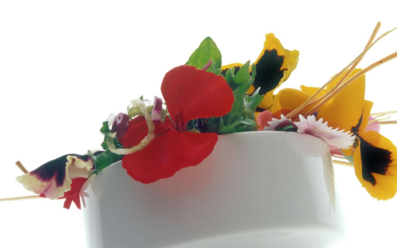 """Dulce Patria"" rinde homenaje a la gastronomía francesa"