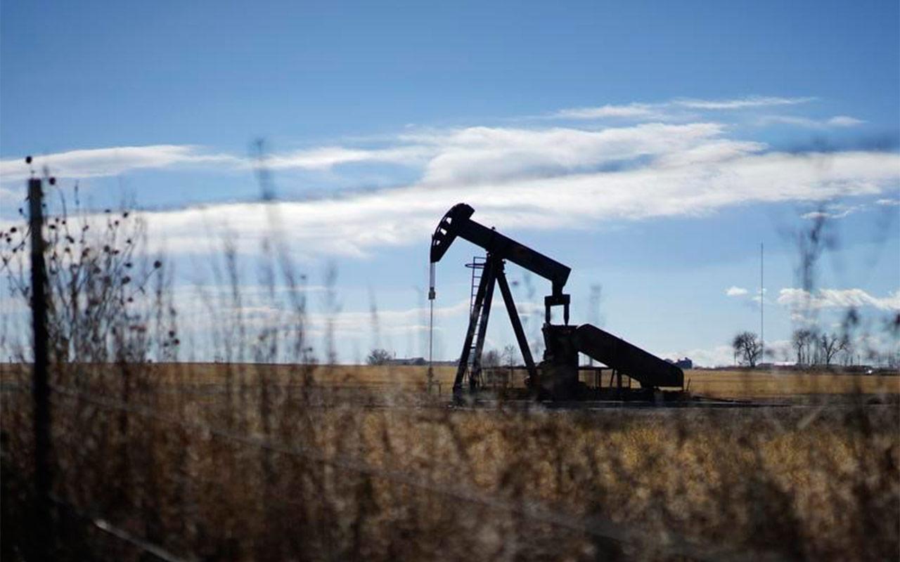 Reinaissance Oil Corp va por 30 proyectos petroleros en México en 5 años