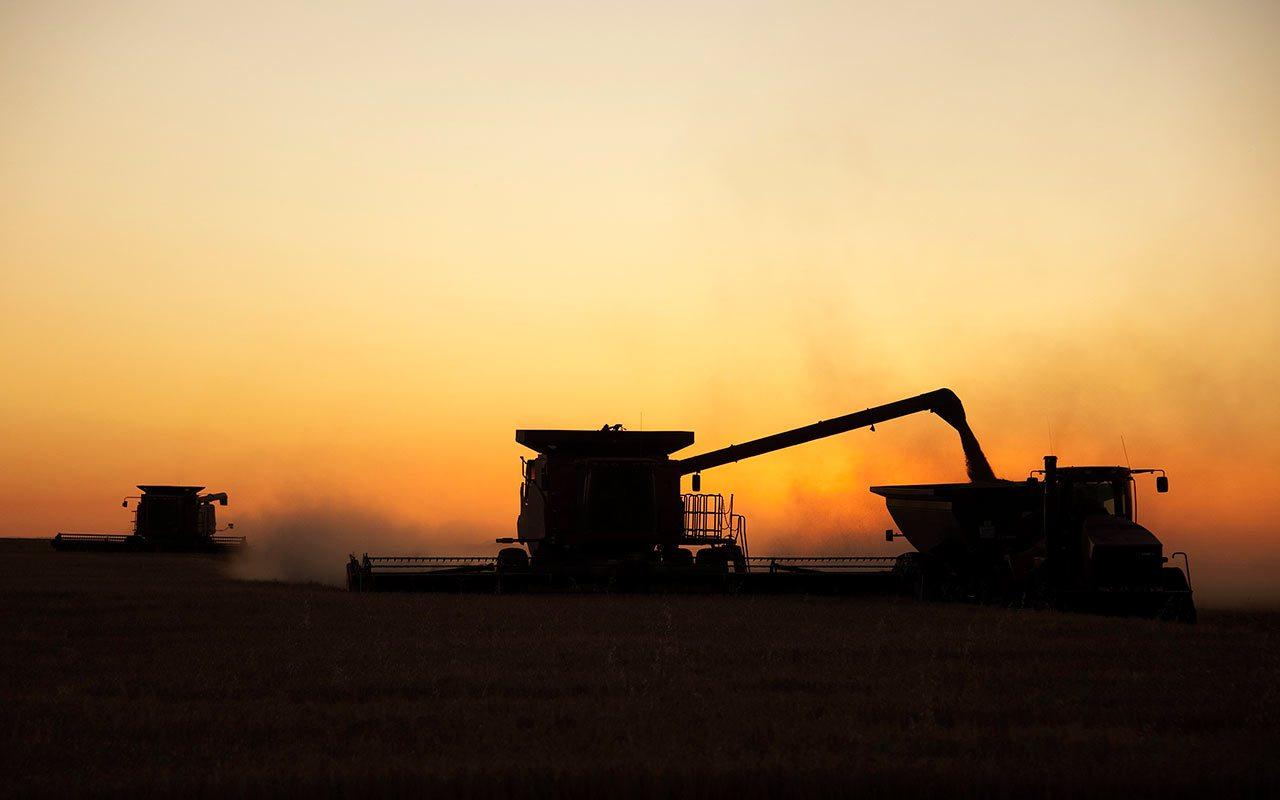 EU dará dinero a agricultores para aliviar tensión comercial con China