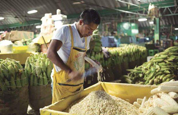 Cofece advierte de posible colusión en mercado de tortilla