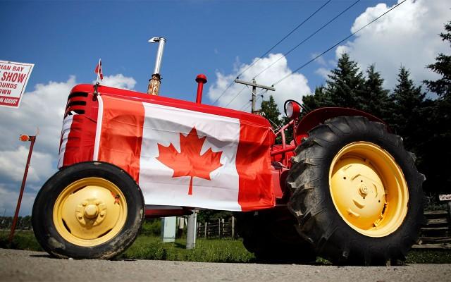 Economía de Canadá (Foto: Reuters)