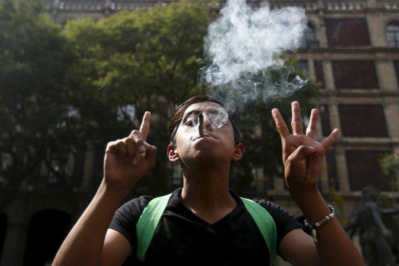 Con protesta en el Senado, activistas exigen cumplir con legislación del cannabis