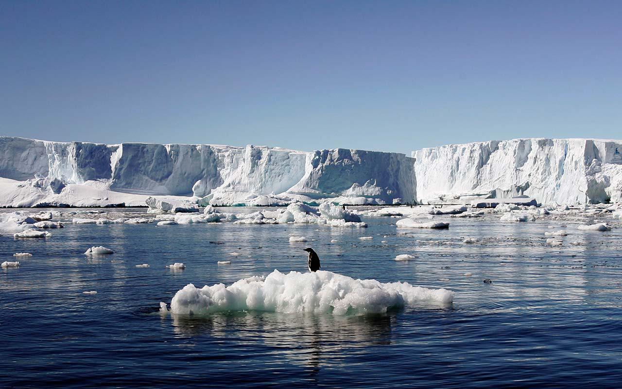 A más empresas mexicanas les preocupa el cambio climático