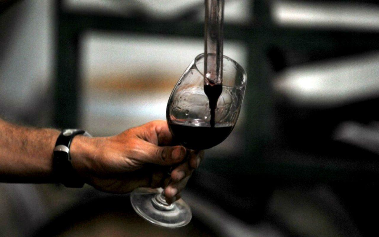 3 tips para 'wine lovers' novatos (que todo experto debe conocer)