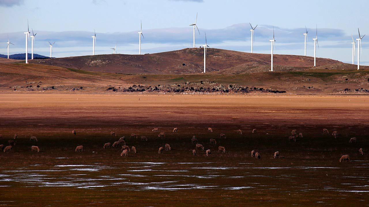 Vientos de cambio con el uso de la energía eólica