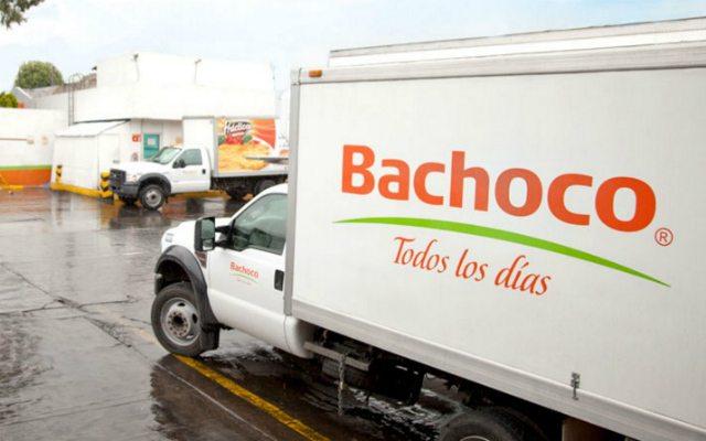 Ventas de Bachoco se disparan 22% pese a súper dólar