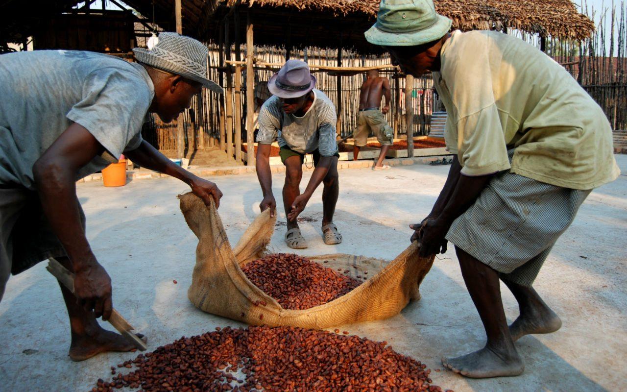 Una chocolatera social en Madagascar
