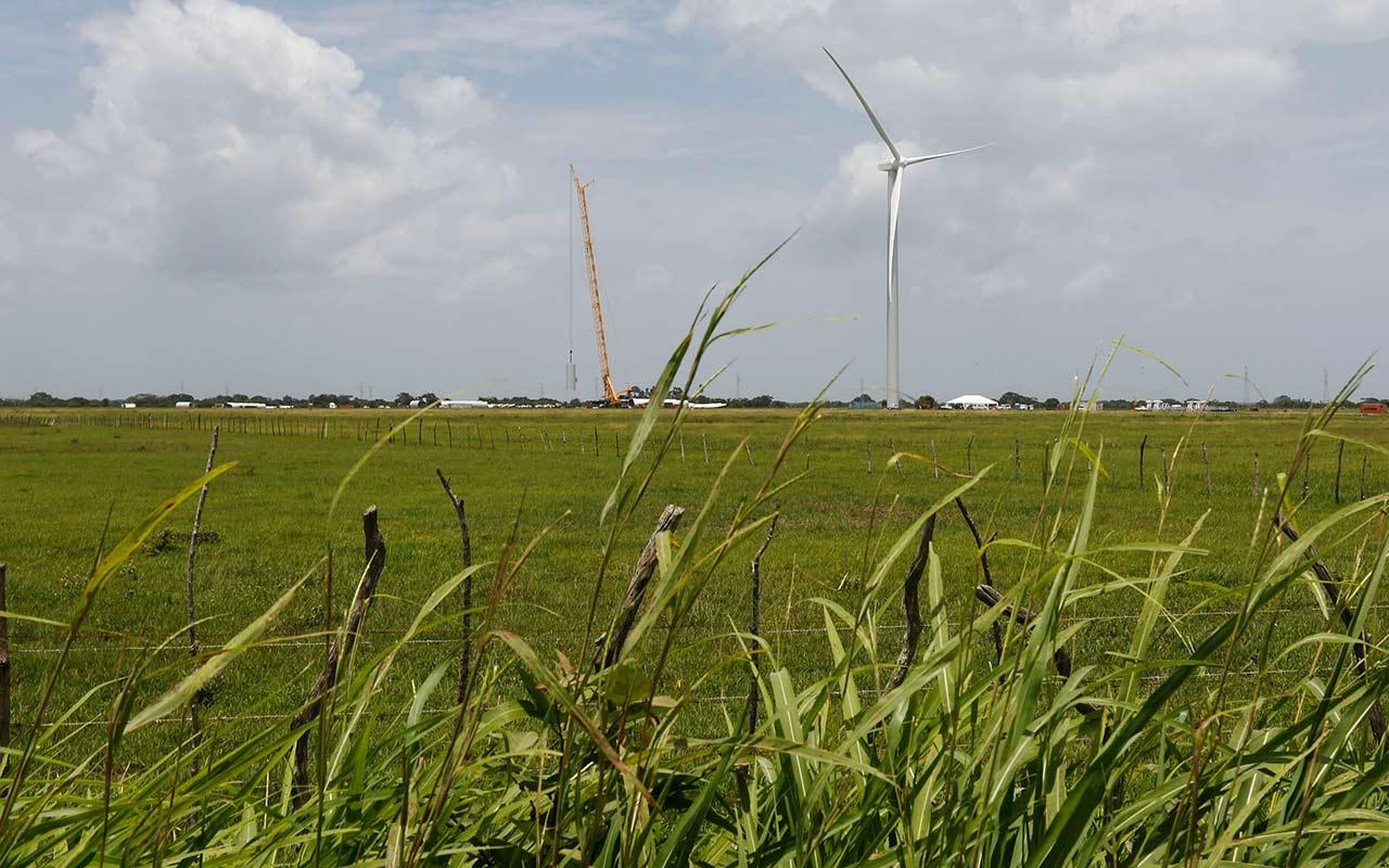 Bio Pappel encabeza lista de las 40 empresas verdes en México
