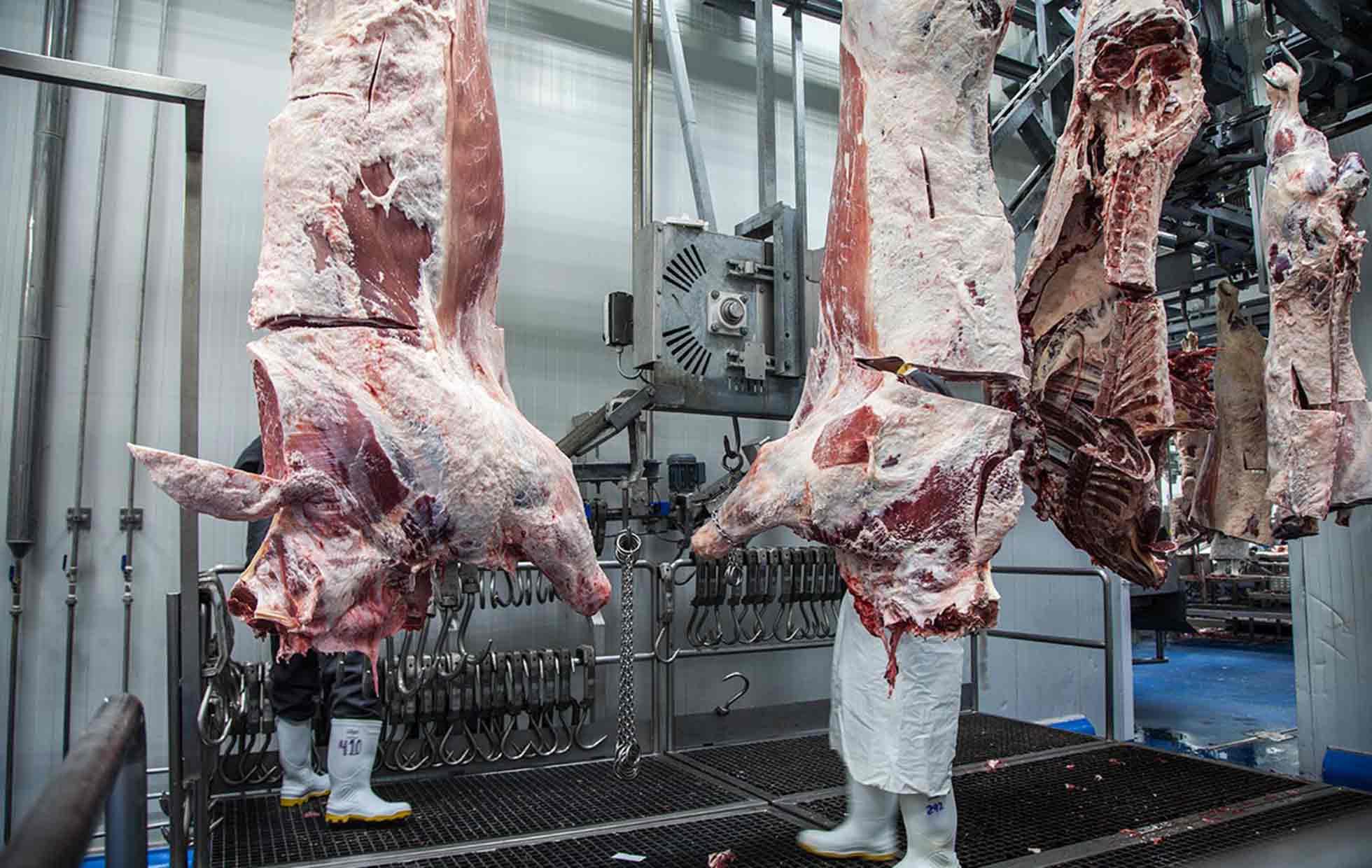 Lograremos récord de exportación en productos agroalimentarios: SuKarne