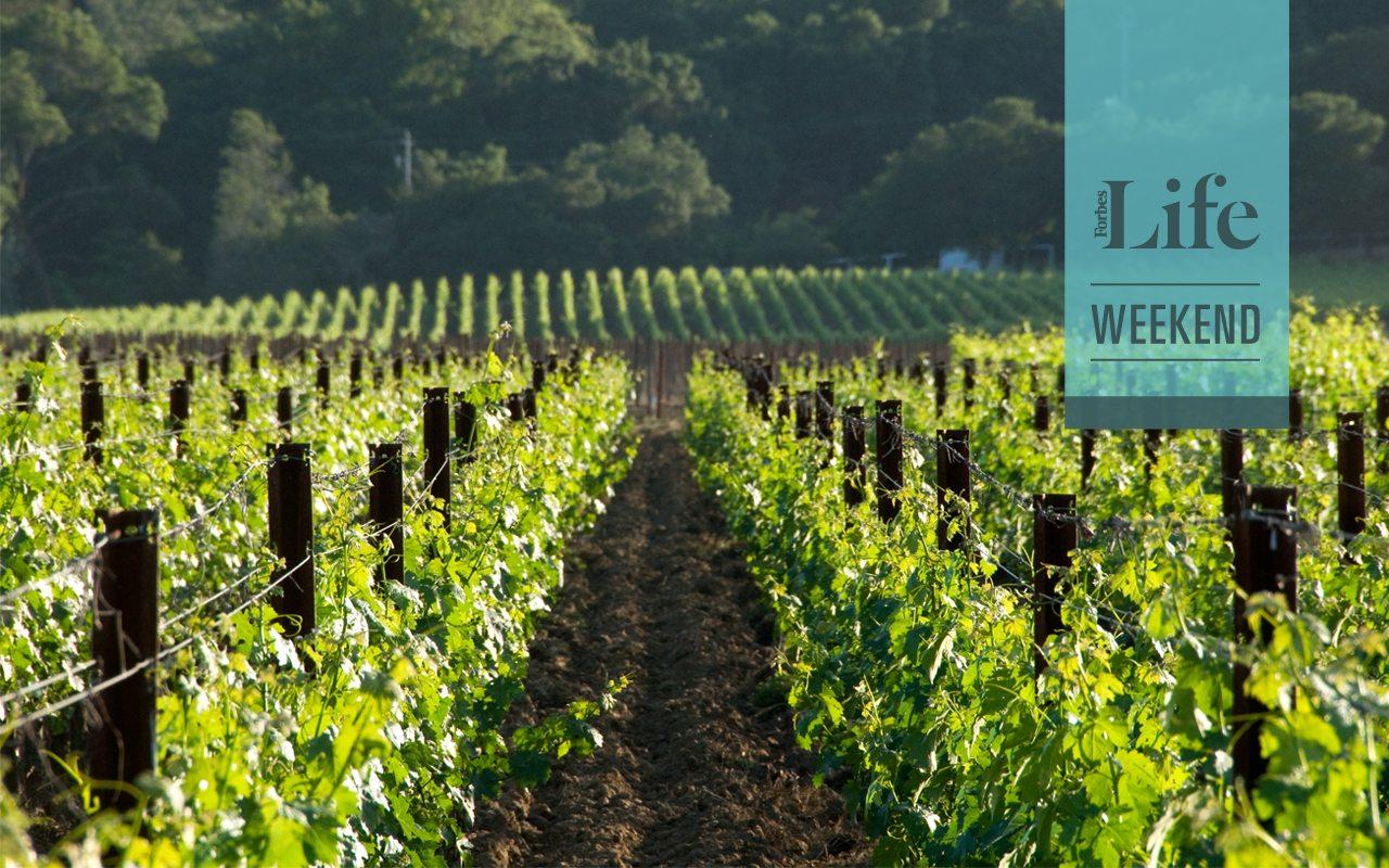 vinos-50-best
