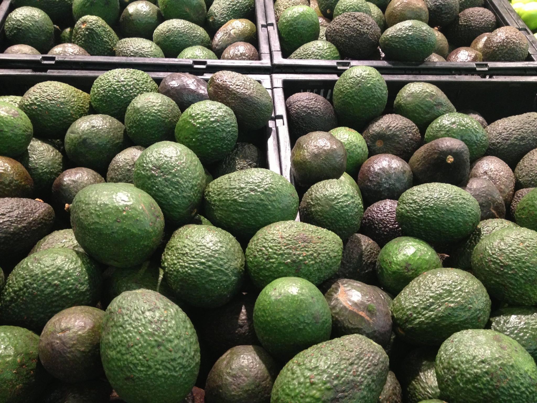 Razones por las que el aguacate puede llegar a costar 63 pesos el kilo