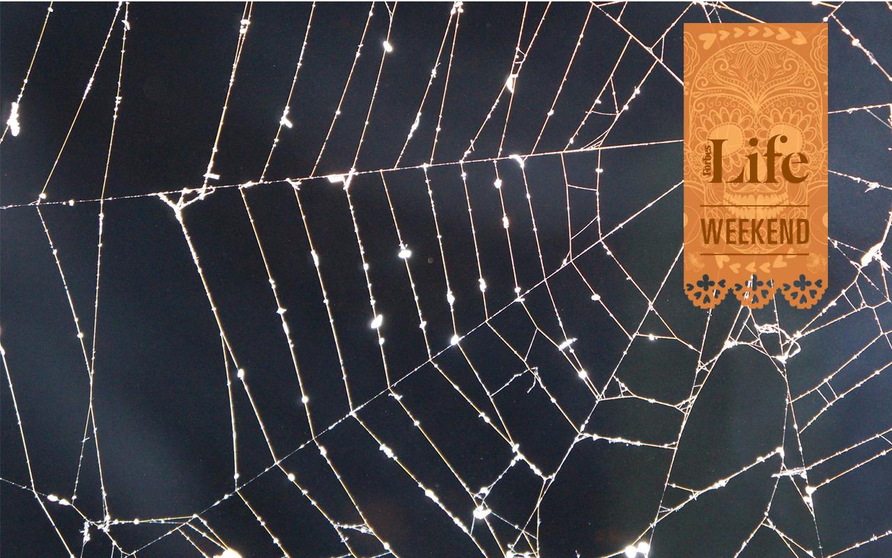 5 destinos imperdibles para festejar Halloween