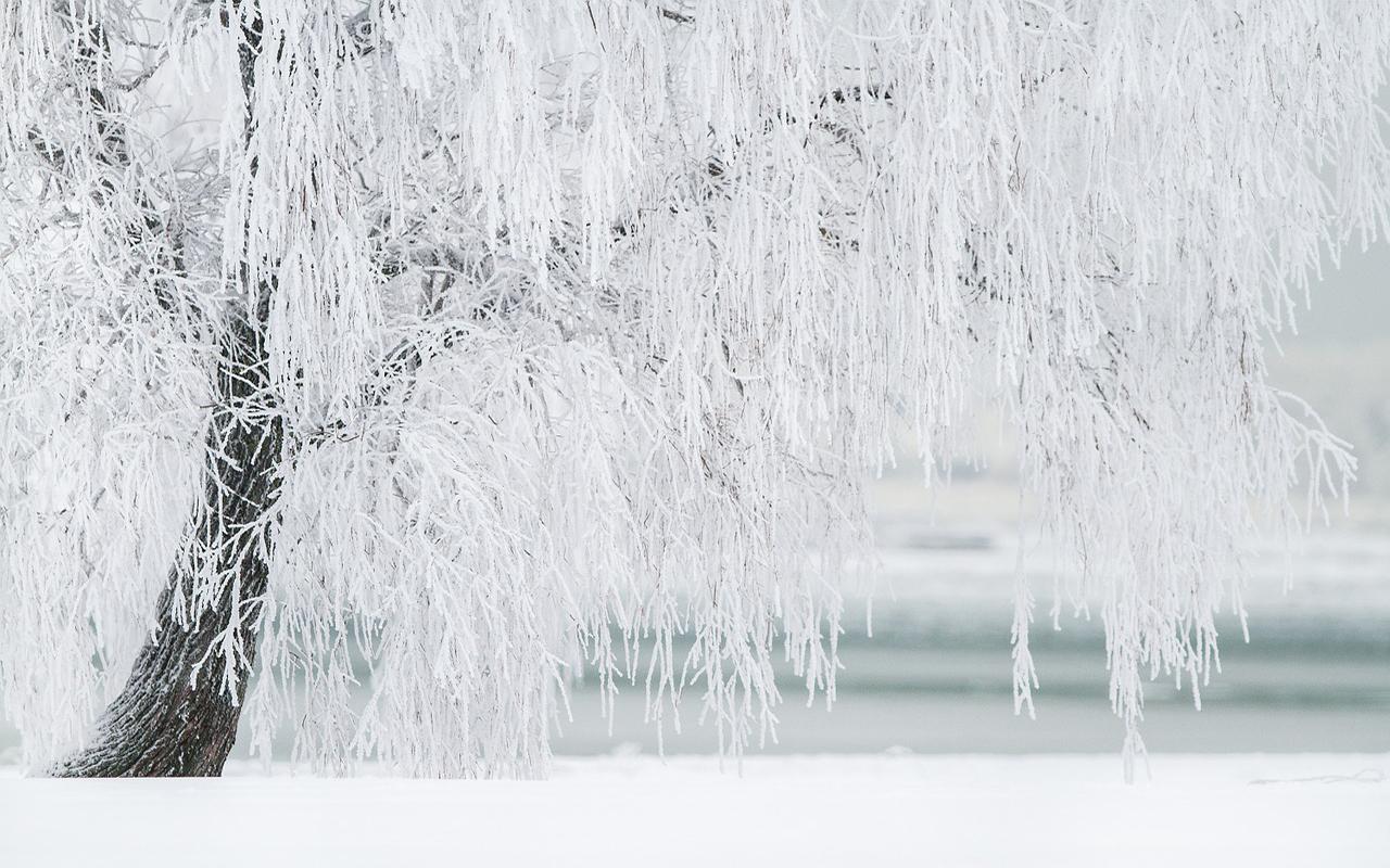 3 experiencias de lujo para disfrutar del invierno