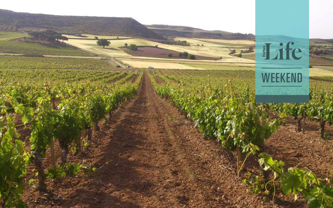 Ribera del Duero: In Vino Veritas