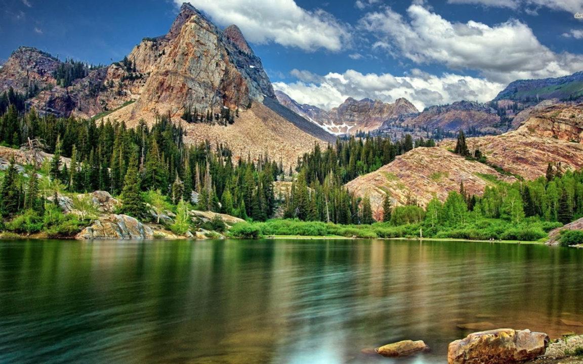 Viajes ecológicos, la tendencia del año en turismo