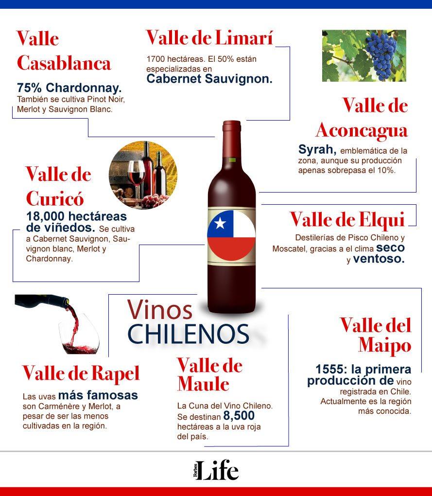 para entender al vino chileno hay que descubrir su
