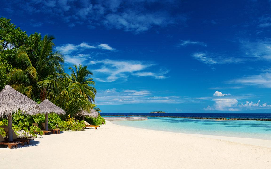 5 lecturas para llevarte a la playa en agosto