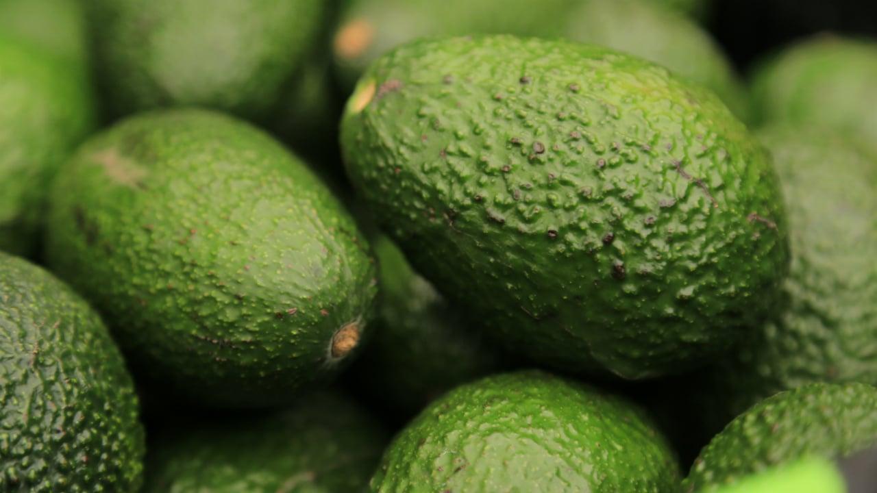 La agroindustria mexicana avanza en crisis de coronavirus por incremento en exportaciones