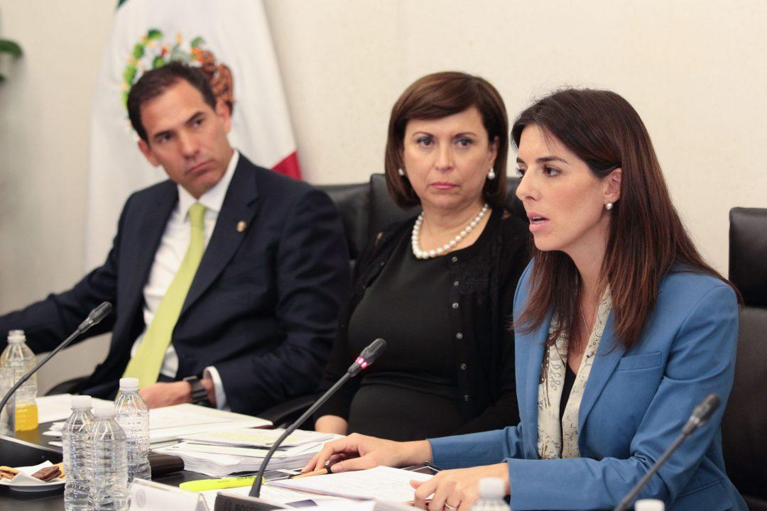 Pese a críticas, Paloma Merodio es la nueva vicepresidenta del Inegi