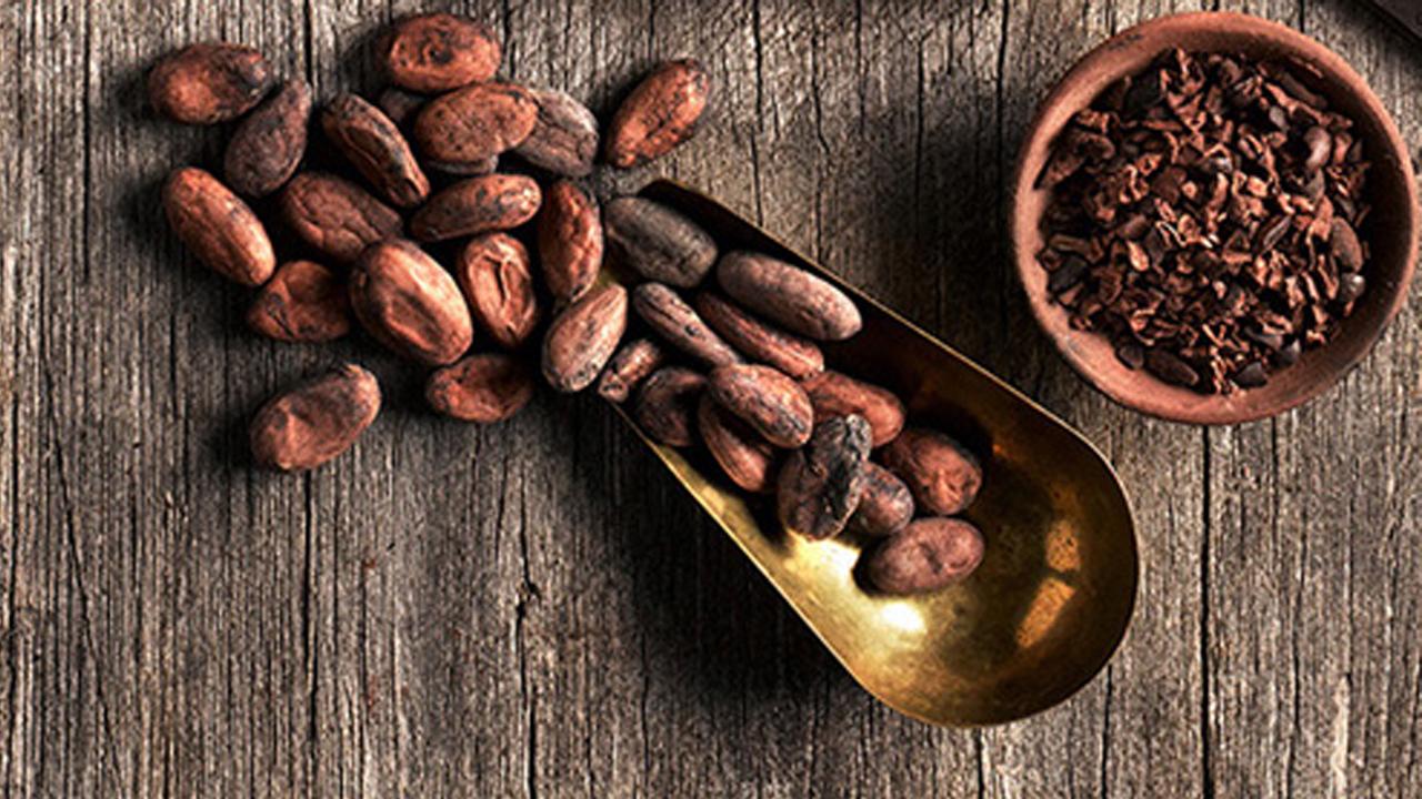Hershey's invierte 5 mdp para cambiar cacao africano por mexicano