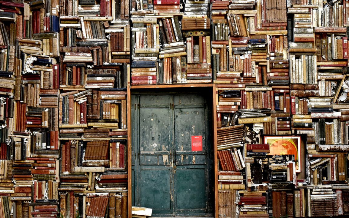 Los libros que han sacudido el 2017