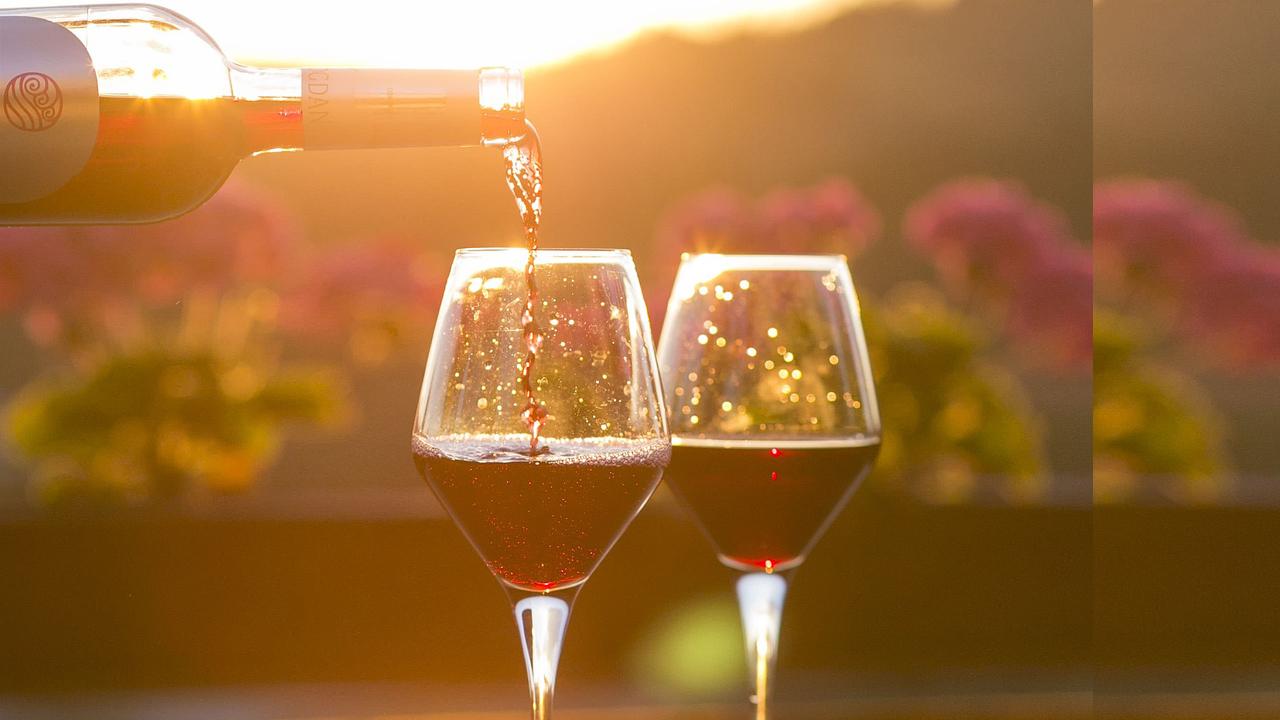 Recorridos vinícolas a unas horas de la Ciudad de México
