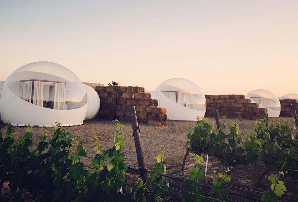 El único hotel burbuja de Norte América está en el Valle de Guadalupe