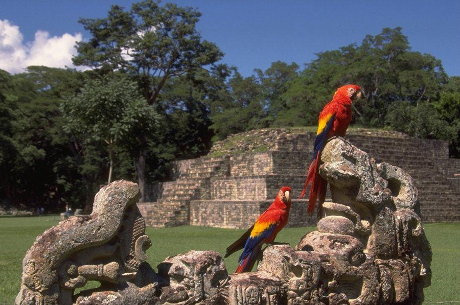 Esta es la apuesta de Guatemala para incrementar el turismo arqueológico