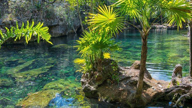 tianguis turistico yucatan