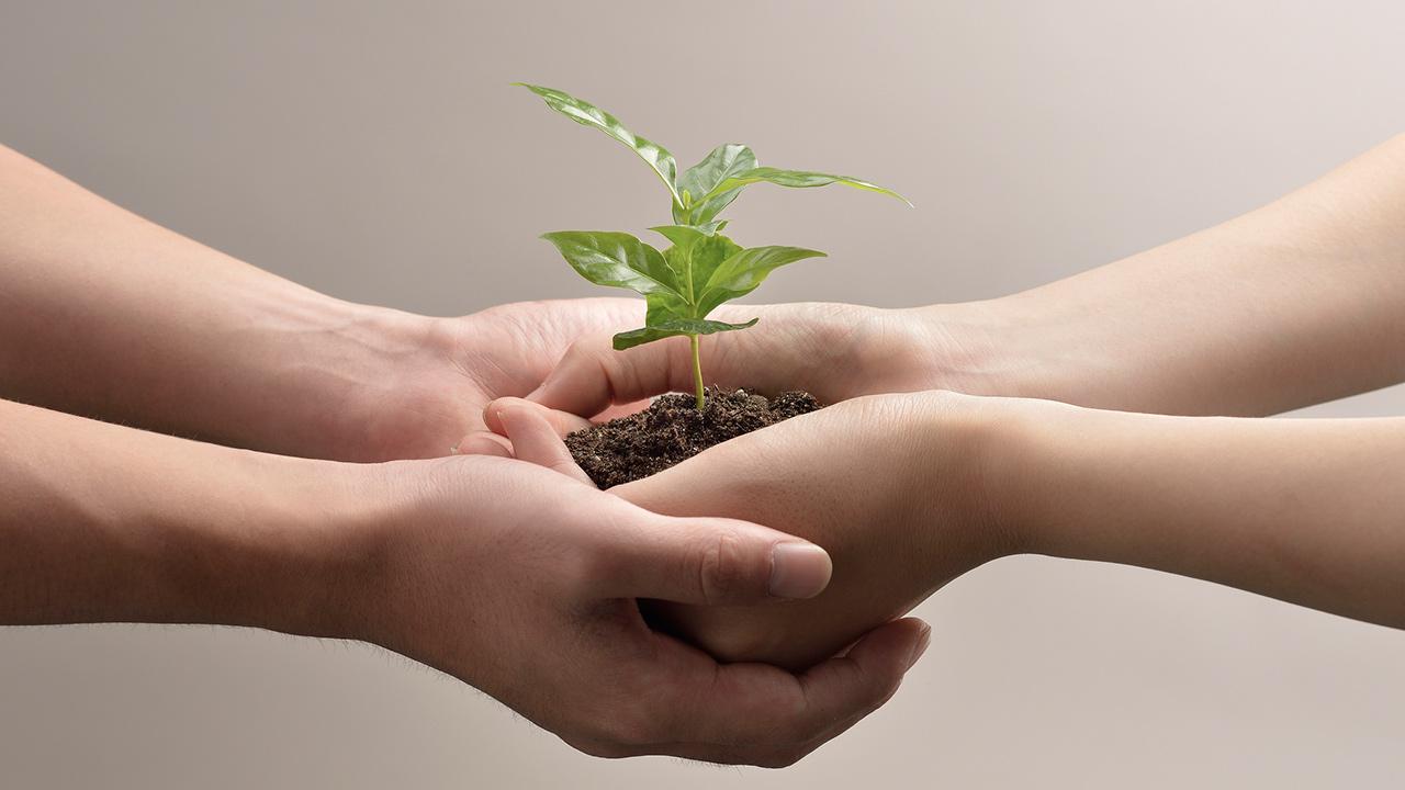 Personal, social y ambiental. Las tres líneas de acción que detonan el desarrollo sustentable
