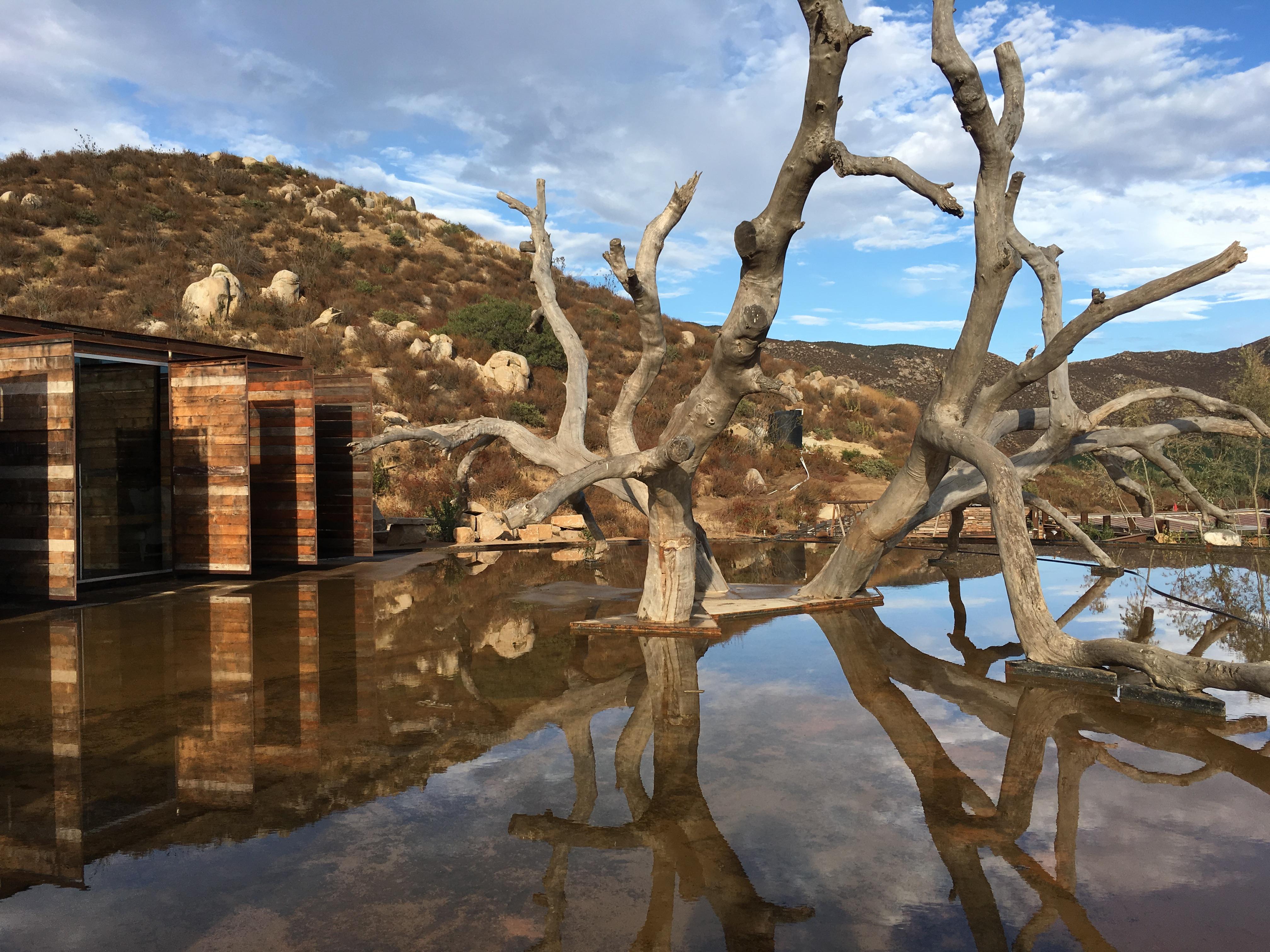 Verano en el Valle de Guadalupe, algunas novedades para disfrutar
