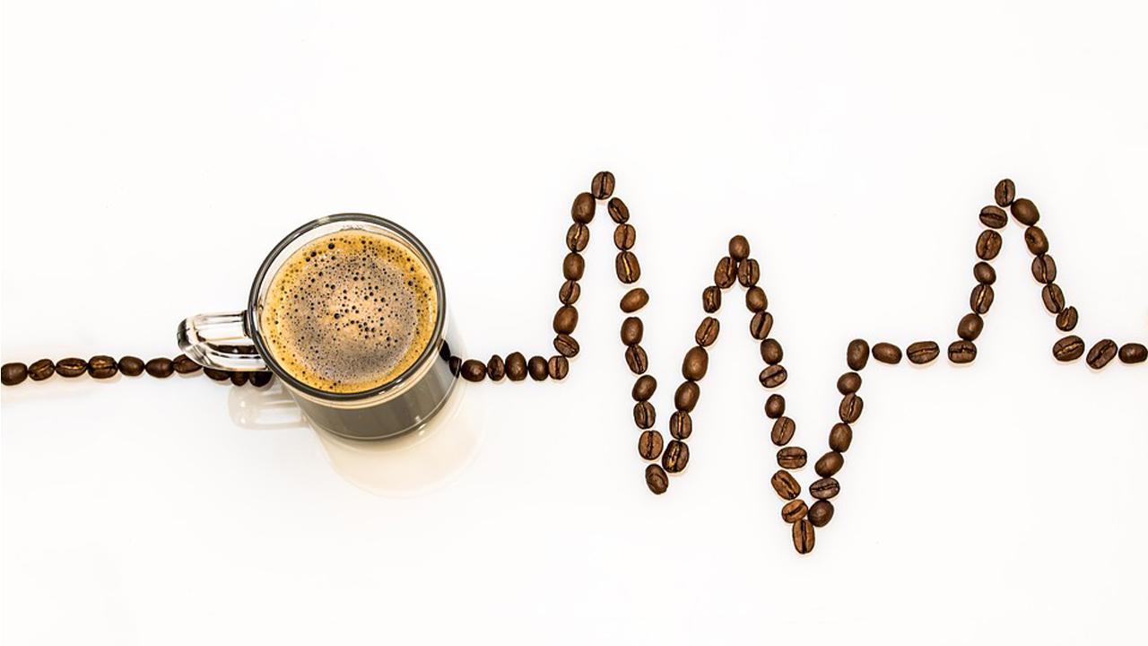 ONG y empresa cafetera se unen para crear un café sustentable