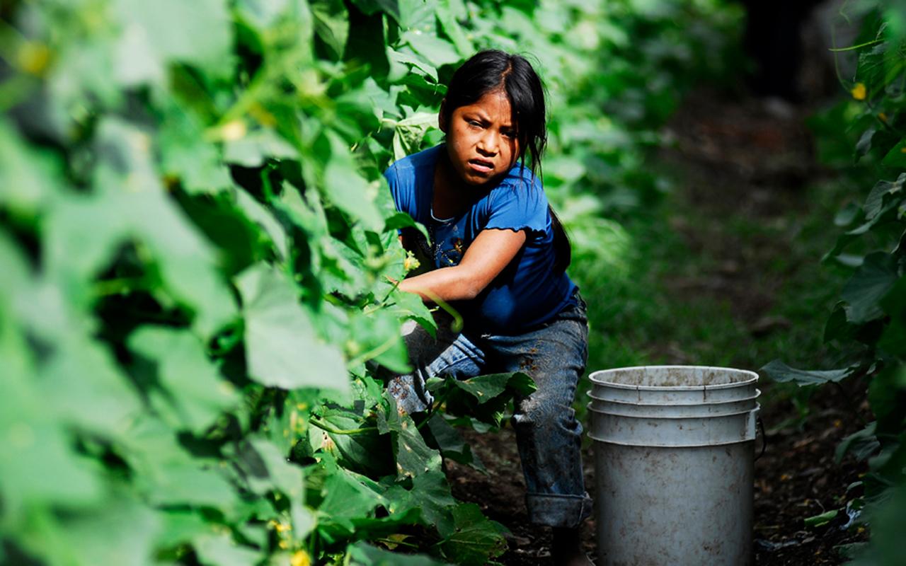 Violencia y pobreza ponen en riesgo a niños y jóvenes