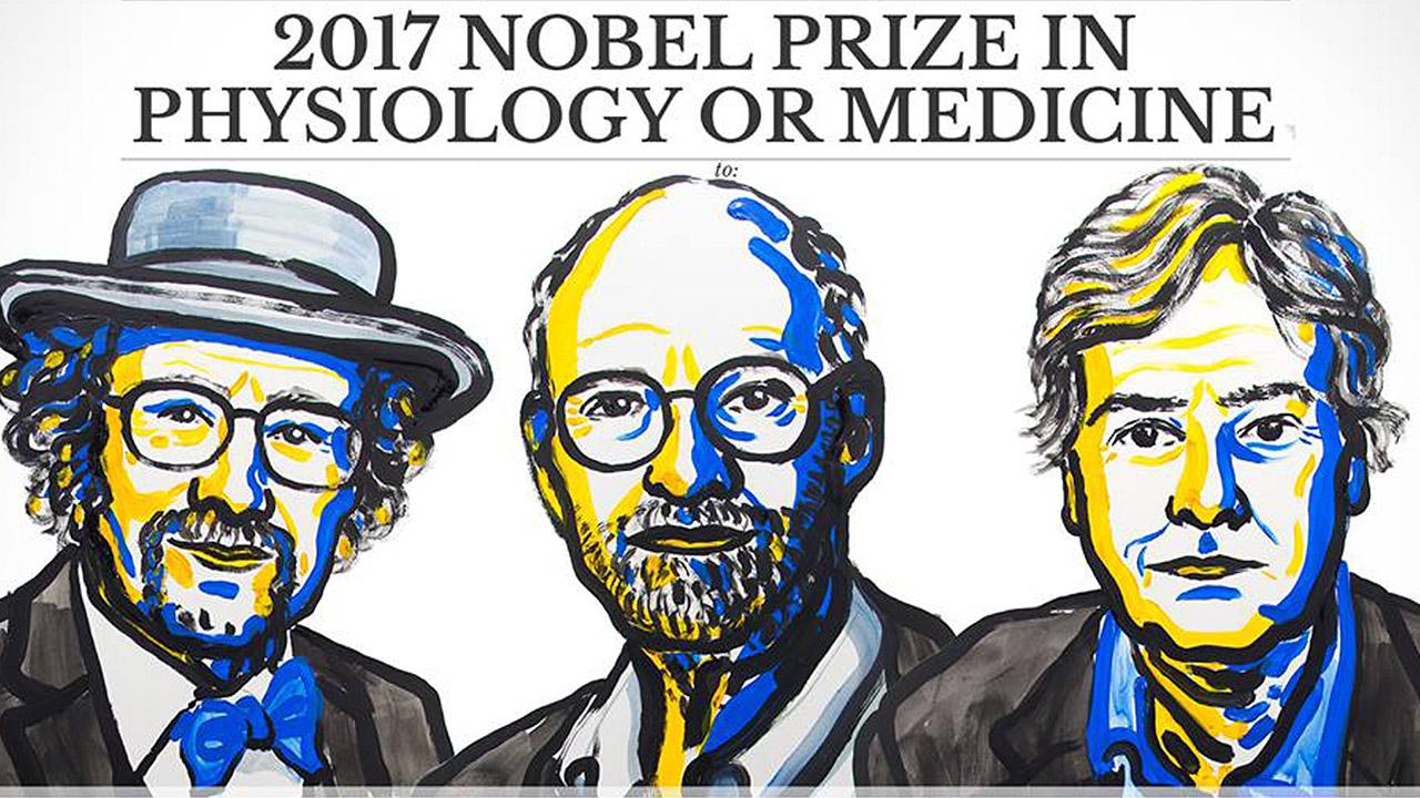 """Científicos del """"reloj biológico"""" ganan Premio Nobel de Medicina 2017"""