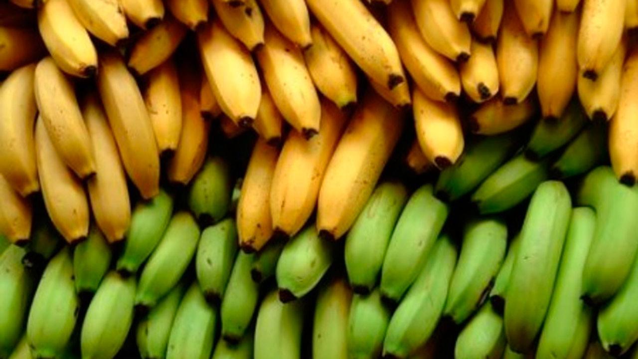 "Así es como Guatemala ""convence"" a Europa para vender más banano"