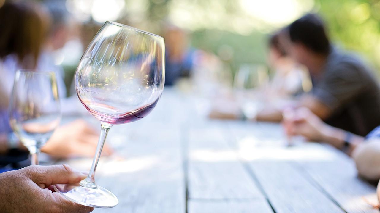 La guía que te hará parecer un experto en vinos