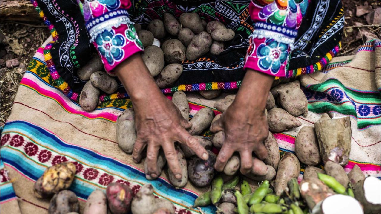Perú importa 92 mdd en alimentos mexicanos