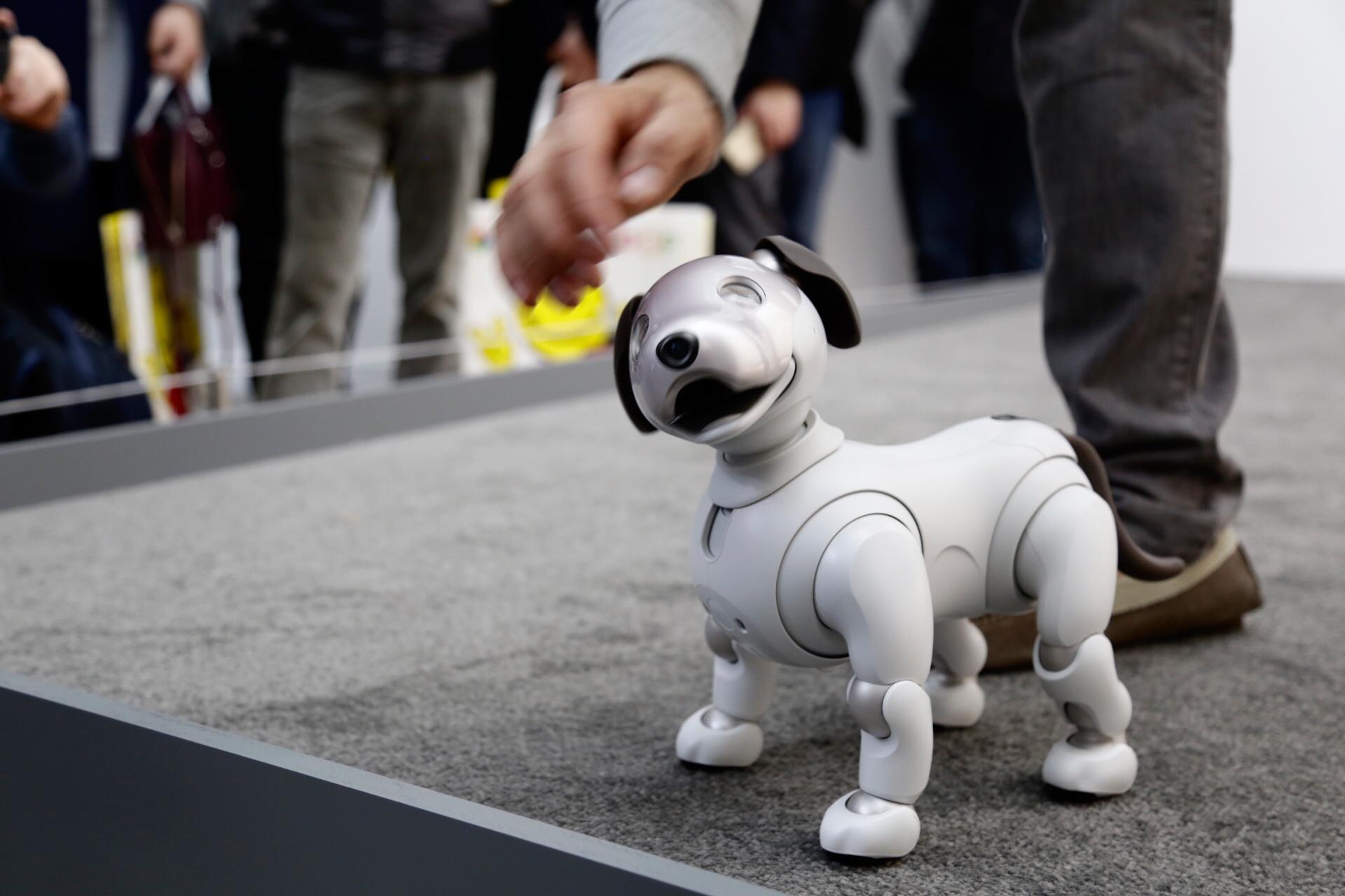 CES 2018 | Regresa Aibo, el perro robot de Sony