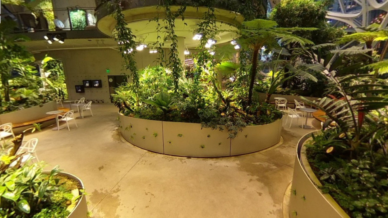 The Spheres, las nuevas oficinas de Amazon al estilo Rainforest